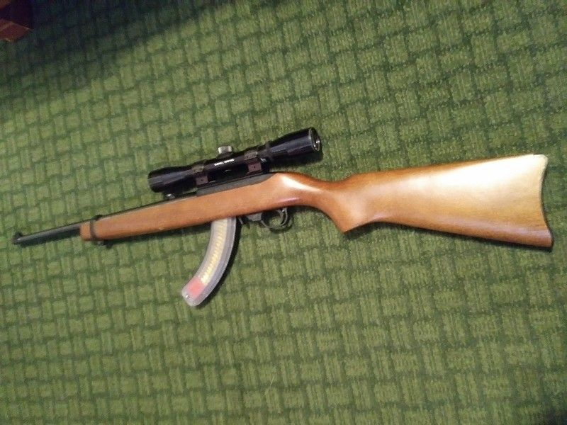 Ruger 10/22 rifle.