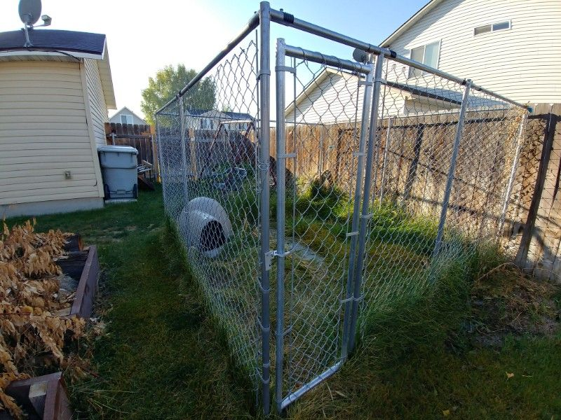 Dog Kennel and house
