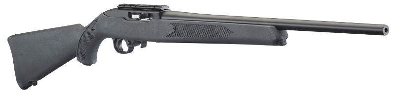Ruger 10/22s: Synthetic Charcoal or Hardwood