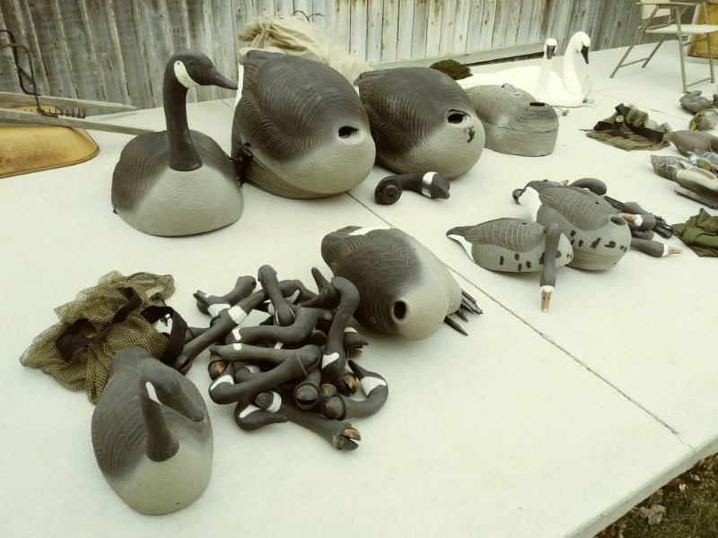 Decoys for sale, Goose, Duck, Swan, Sandhill Crane, and Antelope